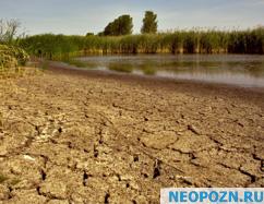 засуха 2010