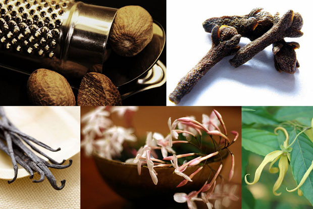 10 фактов о запахах