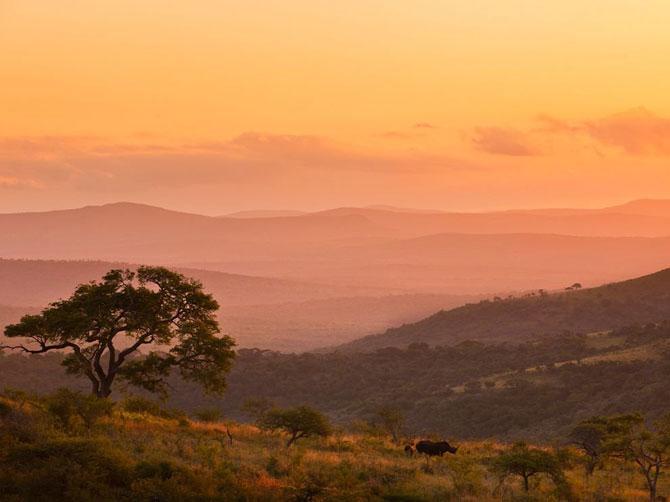 Лучшие фотографии марта 2012 от National Geographic