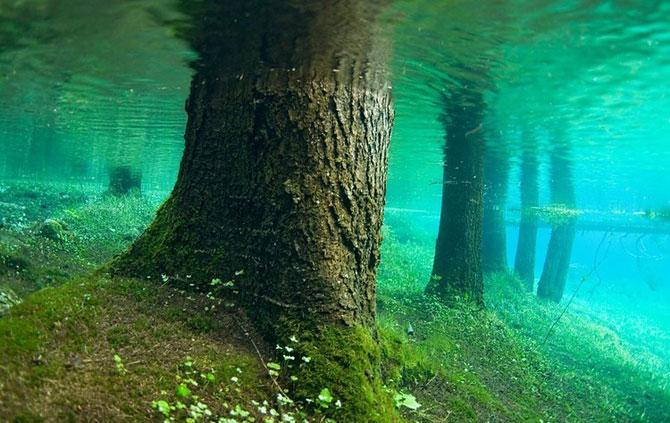 Зелёное Озеро