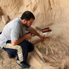 В древнем дворце нашли склад отрубленных рук